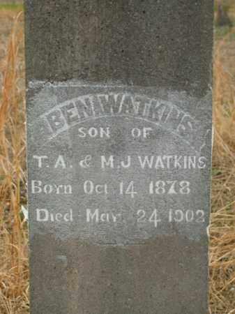 WATKINS, BEN - Boone County, Arkansas | BEN WATKINS - Arkansas Gravestone Photos