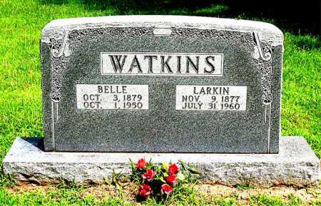 WATKINS, LARKIN - Boone County, Arkansas | LARKIN WATKINS - Arkansas Gravestone Photos
