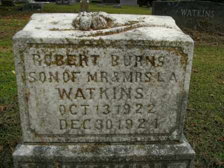 WATKINS, ROBERT BURNS - Boone County, Arkansas | ROBERT BURNS WATKINS - Arkansas Gravestone Photos