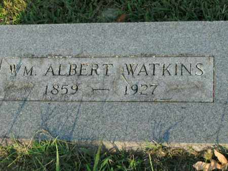 WATKINS, WM. ALBERT - Boone County, Arkansas | WM. ALBERT WATKINS - Arkansas Gravestone Photos