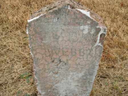 WEBB, W.E. - Boone County, Arkansas | W.E. WEBB - Arkansas Gravestone Photos