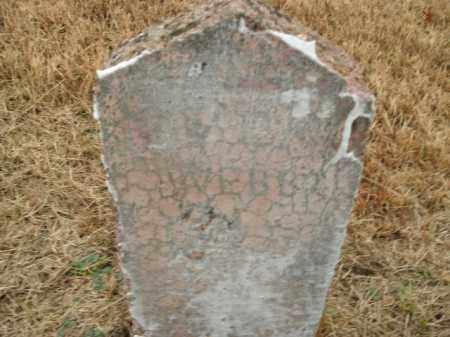 WEBB, W.E. - Boone County, Arkansas | W.E. WEBB - Arkansas Gravestone Photos