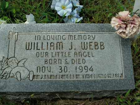 WEBB, WILLIAM J. - Boone County, Arkansas | WILLIAM J. WEBB - Arkansas Gravestone Photos