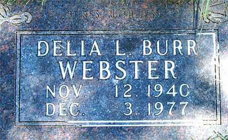 WEBSTER, DELIA L. - Boone County, Arkansas | DELIA L. WEBSTER - Arkansas Gravestone Photos