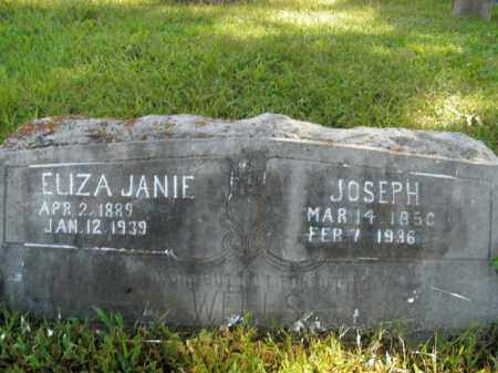WELLS, ELIZA JANIE - Boone County, Arkansas | ELIZA JANIE WELLS - Arkansas Gravestone Photos