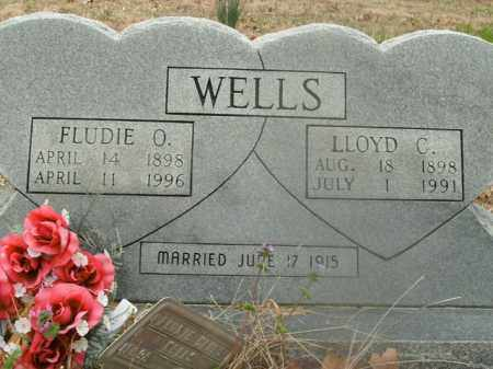 WELLS, FLUDIE OPHELIA - Boone County, Arkansas | FLUDIE OPHELIA WELLS - Arkansas Gravestone Photos