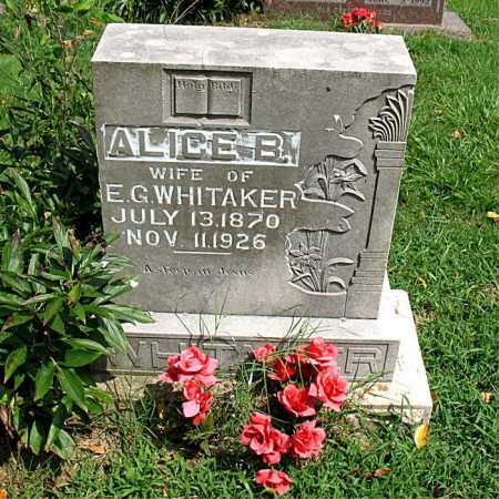OAKES WHITAKER, ALICE B. - Boone County, Arkansas | ALICE B. OAKES WHITAKER - Arkansas Gravestone Photos