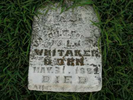 WHITAKER, JASON - Boone County, Arkansas | JASON WHITAKER - Arkansas Gravestone Photos