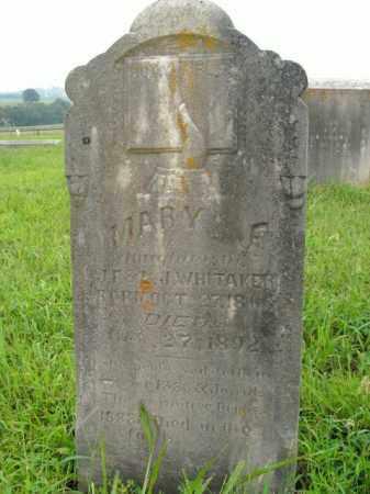 WHITAKER, MARY F. - Boone County, Arkansas | MARY F. WHITAKER - Arkansas Gravestone Photos