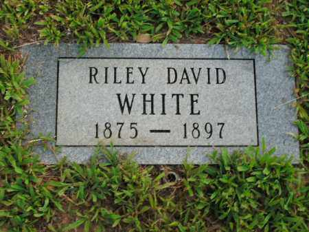 WHITE, RILEY DAVID - Boone County, Arkansas | RILEY DAVID WHITE - Arkansas Gravestone Photos