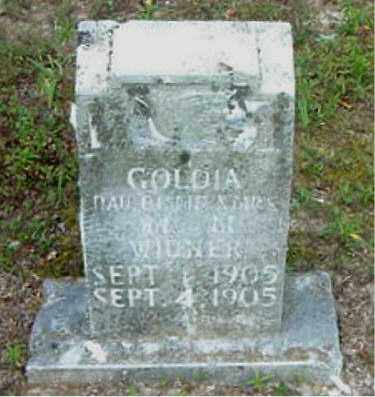 WIDNER, GOLDIA - Boone County, Arkansas | GOLDIA WIDNER - Arkansas Gravestone Photos