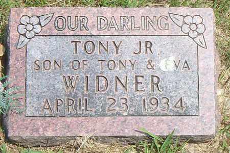 WIDNER, TONY JR. - Boone County, Arkansas | TONY JR. WIDNER - Arkansas Gravestone Photos