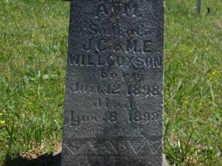 WILLCOXSON, A.M. - Boone County, Arkansas | A.M. WILLCOXSON - Arkansas Gravestone Photos