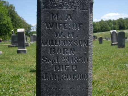 WILLCOXSON, M.A. - Boone County, Arkansas | M.A. WILLCOXSON - Arkansas Gravestone Photos
