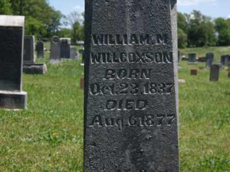 WILLCOXSON, WILLIAM M - Boone County, Arkansas | WILLIAM M WILLCOXSON - Arkansas Gravestone Photos