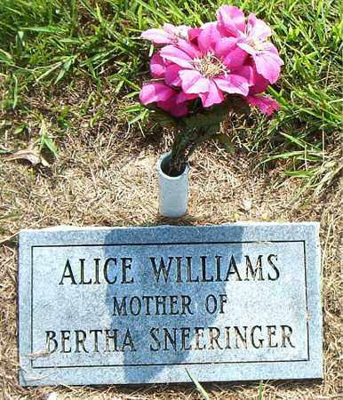 WILLIAMS, ALICE - Boone County, Arkansas | ALICE WILLIAMS - Arkansas Gravestone Photos