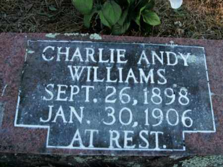 WILLIAMS, CHARLIE ANDY - Boone County, Arkansas | CHARLIE ANDY WILLIAMS - Arkansas Gravestone Photos