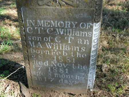 WILLIAMS, C.T.C. - Boone County, Arkansas | C.T.C. WILLIAMS - Arkansas Gravestone Photos