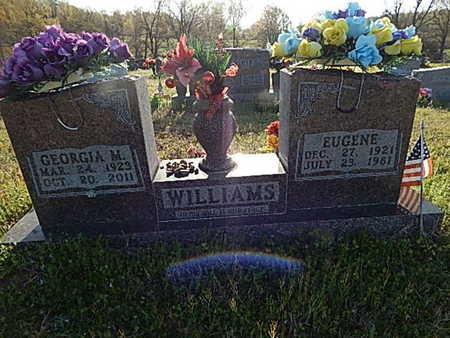 WILLIAMS, EUGENE - Boone County, Arkansas | EUGENE WILLIAMS - Arkansas Gravestone Photos