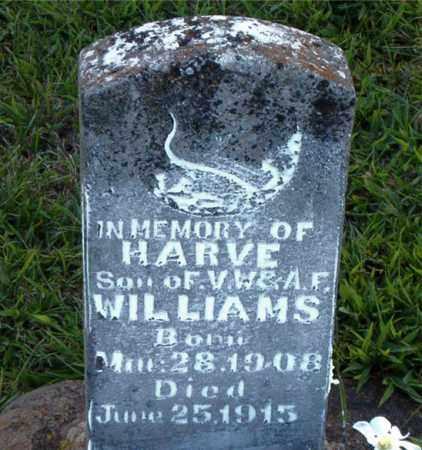 WILLIAMS, HARVE - Boone County, Arkansas | HARVE WILLIAMS - Arkansas Gravestone Photos