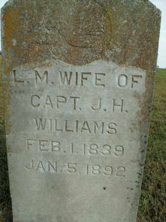 WILLIAMS, LOUISA M. - Boone County, Arkansas | LOUISA M. WILLIAMS - Arkansas Gravestone Photos