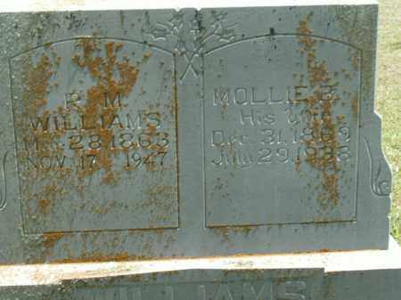 WILLIAMS, MOLLIE B. - Boone County, Arkansas | MOLLIE B. WILLIAMS - Arkansas Gravestone Photos
