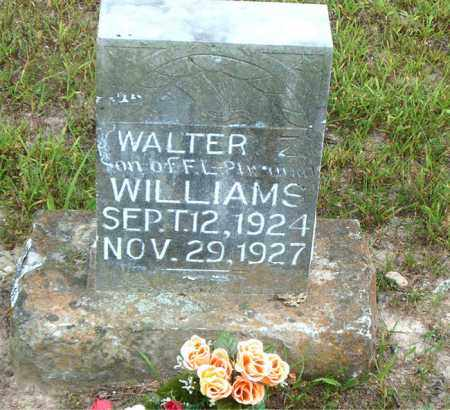 WILLIAMS, WALTER - Boone County, Arkansas | WALTER WILLIAMS - Arkansas Gravestone Photos