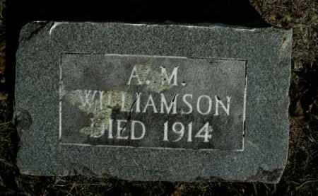 WILLIAMSON, A.M. - Boone County, Arkansas | A.M. WILLIAMSON - Arkansas Gravestone Photos