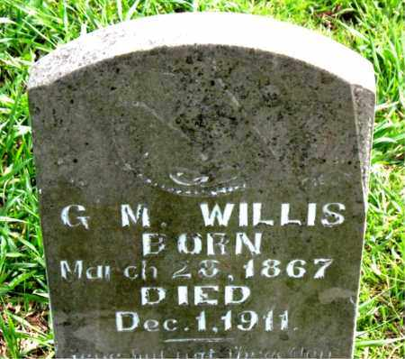 WILLIS, G M - Boone County, Arkansas | G M WILLIS - Arkansas Gravestone Photos