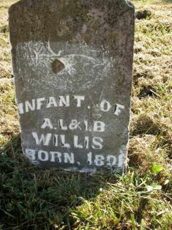 WILLIS, INFANT - Boone County, Arkansas | INFANT WILLIS - Arkansas Gravestone Photos