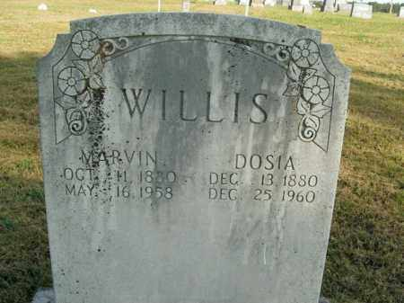 WILLIS, DOSIA - Boone County, Arkansas | DOSIA WILLIS - Arkansas Gravestone Photos