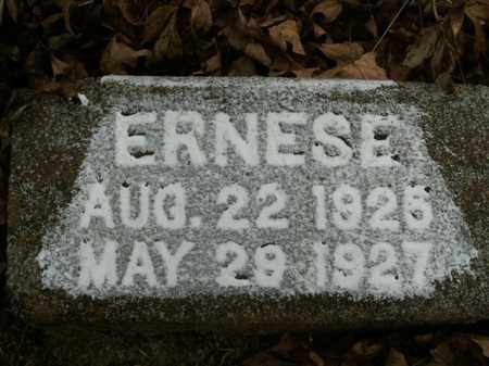WILMOTH, ERNESE - Boone County, Arkansas | ERNESE WILMOTH - Arkansas Gravestone Photos