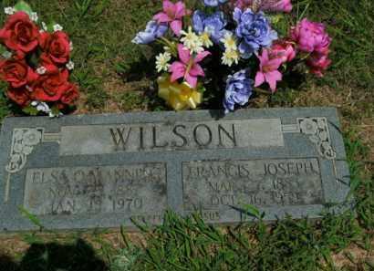 WILSON, FRANCIS JOSEPH - Boone County, Arkansas | FRANCIS JOSEPH WILSON - Arkansas Gravestone Photos