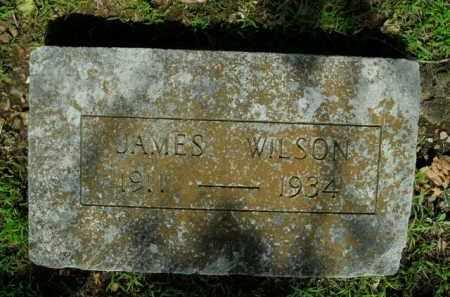 WILSON, JAMES - Boone County, Arkansas | JAMES WILSON - Arkansas Gravestone Photos