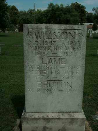 WILSON, NANNIE - Boone County, Arkansas | NANNIE WILSON - Arkansas Gravestone Photos