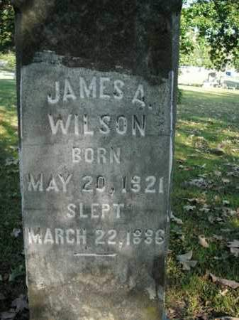 WILSON, JAMES A. - Boone County, Arkansas | JAMES A. WILSON - Arkansas Gravestone Photos