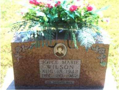 WILSON, JOYCE  MARIE - Boone County, Arkansas | JOYCE  MARIE WILSON - Arkansas Gravestone Photos
