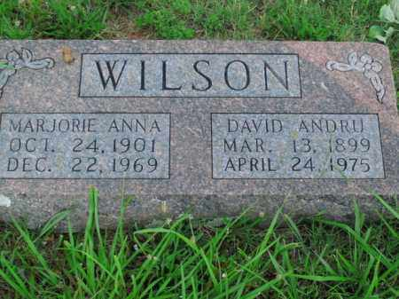 WILSON, DAVID ANDRU - Boone County, Arkansas | DAVID ANDRU WILSON - Arkansas Gravestone Photos