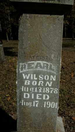 WILSON, PEARL - Boone County, Arkansas | PEARL WILSON - Arkansas Gravestone Photos