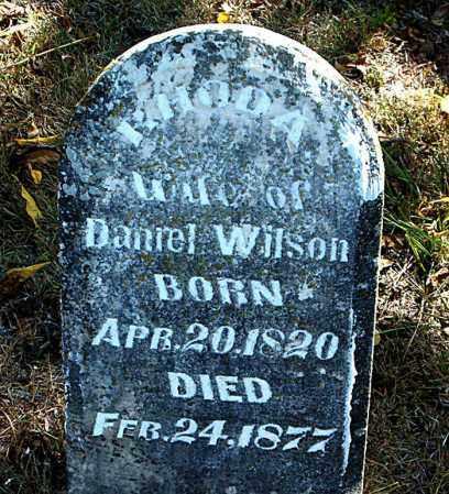 WILSON, RHODA - Boone County, Arkansas   RHODA WILSON - Arkansas Gravestone Photos