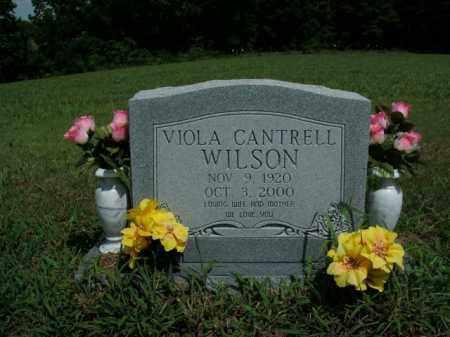 WILSON, VIOLA CANTRELL - Boone County, Arkansas | VIOLA CANTRELL WILSON - Arkansas Gravestone Photos