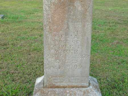 WIMER, DELIA - Boone County, Arkansas | DELIA WIMER - Arkansas Gravestone Photos