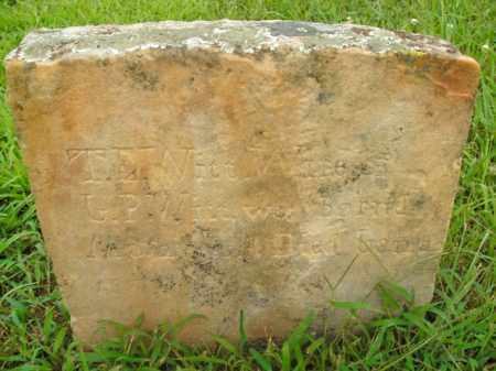 WITT, T.E. - Boone County, Arkansas | T.E. WITT - Arkansas Gravestone Photos