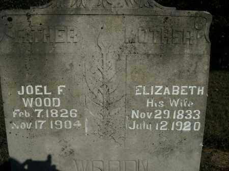 WOOD, ELIZABETH - Boone County, Arkansas | ELIZABETH WOOD - Arkansas Gravestone Photos