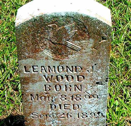 WOOD, LEAMOND  J. - Boone County, Arkansas | LEAMOND  J. WOOD - Arkansas Gravestone Photos