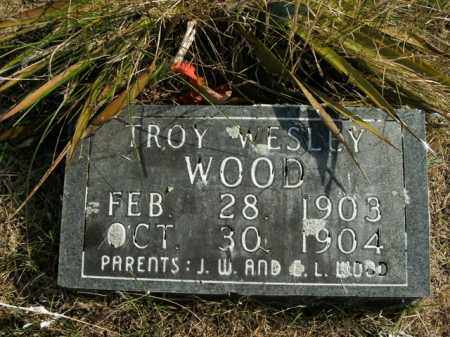 WOOD, TROY WESLEY - Boone County, Arkansas | TROY WESLEY WOOD - Arkansas Gravestone Photos