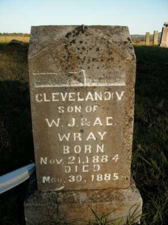 WRAY, CLEVELAND V. - Boone County, Arkansas | CLEVELAND V. WRAY - Arkansas Gravestone Photos