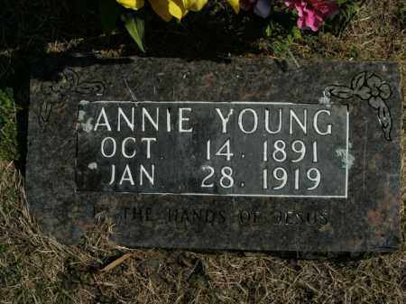 YOUNG, ANNIE - Boone County, Arkansas | ANNIE YOUNG - Arkansas Gravestone Photos