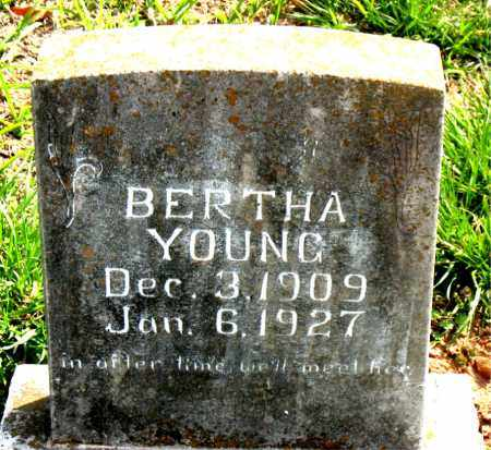 YOUNG, BERTHA - Boone County, Arkansas | BERTHA YOUNG - Arkansas Gravestone Photos
