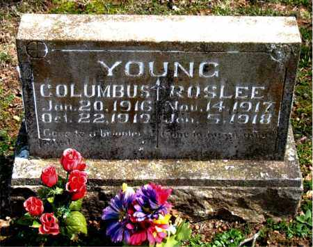 YOUNG, COLUMBUS - Boone County, Arkansas | COLUMBUS YOUNG - Arkansas Gravestone Photos